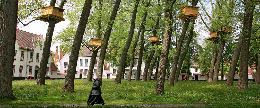 Projects by 14 participants - Triennale Brugge 2015