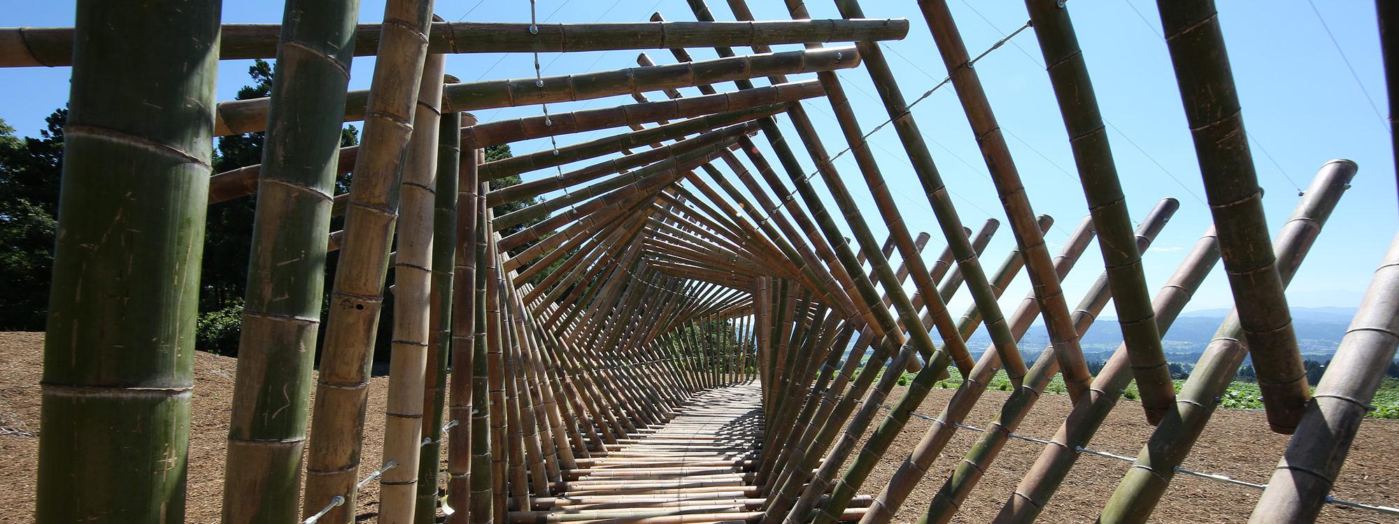 Echigo-Tsumari Triennale 2015 - große Fototour