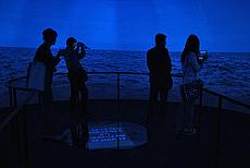 UAE Pavilion 2013
