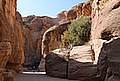 View of the Siq