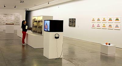 43 Salón (inter) Nacional de Artistas 2013