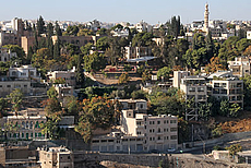 Jabal Amman: MMAG Foundation, Wild Jordan etc.
