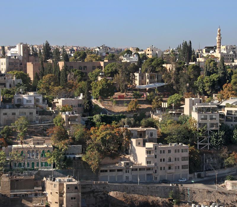 Jabal Amman: MMAG Foundation, Wild Jordan and more