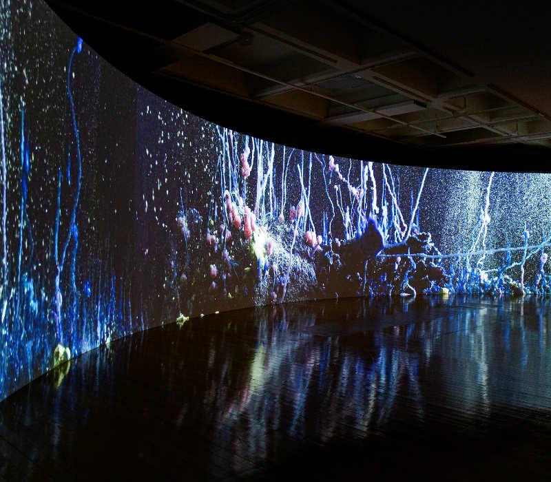 12ª Bienal de Taipei 2020